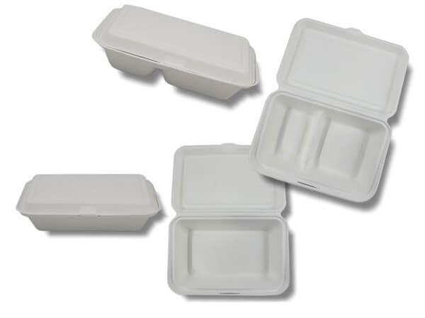 Bio Zuckerrohr Lunchbox